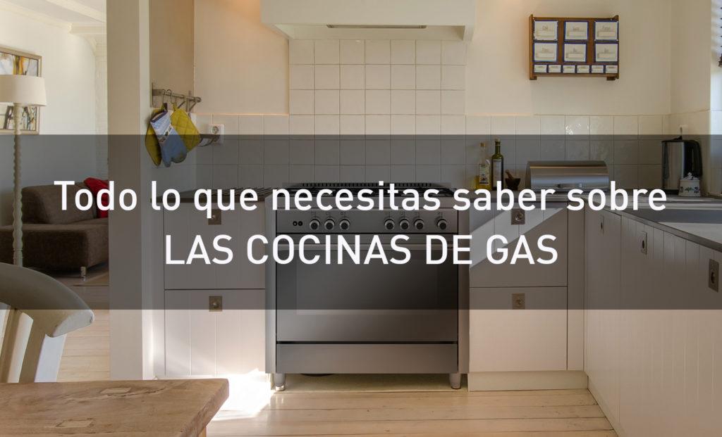 Cocinas a gas para una cocina moderna